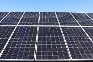 Solarvest-Builds-Capacity-for-Solar-Revolution